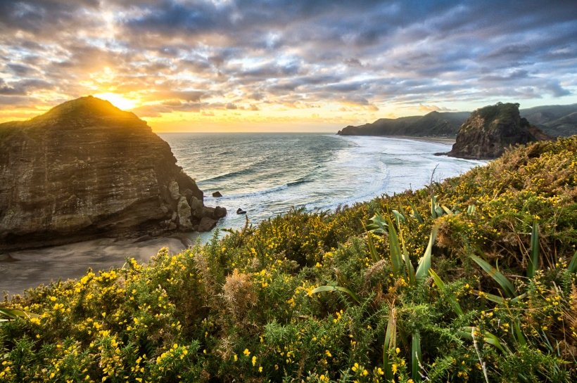 Image sourced from http://www.travelphotoadventures.com/category/piha/